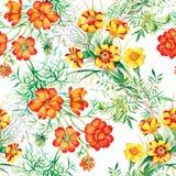 Il giardino variopinto fiorisce il modello senza cuciture Immagine Stock Libera da Diritti