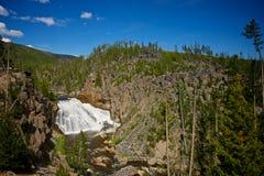 Il Gibbon cade nella sosta nazionale del Yellowstone Fotografie Stock Libere da Diritti