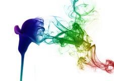 Il giglio dal fumo Fotografie Stock