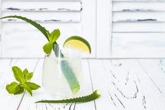 Il gin ed il tonico scintillanti della menta del cetriolo sono in effervescenza con aloe vera sulla tavola rustica Copi lo spazio Fotografia Stock Libera da Diritti