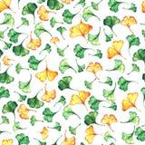Il ginkgo biloba lascia ad acquerello floreale il modello senza cuciture Pianta dell'albero conosciuta come il ginko o il gingko  illustrazione di stock