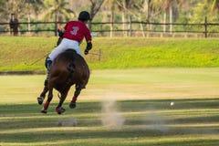 Il giocatore di polo ha colpito una palla di polo con il maglio Immagine Stock Libera da Diritti