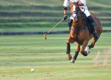 Il giocatore di polo sta guidando su un cavallo Fotografie Stock