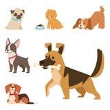 Il gioco sveglio del cucciolo insegue l'illustrazione canina di vettore della razza del mammifero felice comico di razza diverten illustrazione vettoriale