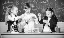 Il giorno dei bambini chimica Di nuovo al banco studenti che fanno gli esperimenti di biologia con il microscopio Apprendimento d immagini stock