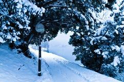 Il giorno di inverno freddo su un lago ha sanguinato, alpi slovene Immagini Stock Libere da Diritti