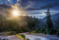 Il giorno e la notte passano la foresta ed il fiume nebbiosi fotografie stock libere da diritti