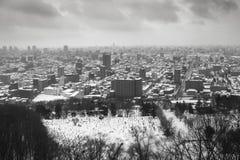 Il giorno nuvoloso nell'inverno Fotografie Stock Libere da Diritti
