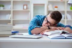 Il giovane adolescente che prepara per gli esami che studiano ad uno scrittorio all'interno Fotografia Stock