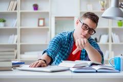 Il giovane adolescente che prepara per gli esami che studiano ad uno scrittorio all'interno Fotografia Stock Libera da Diritti