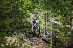 Il giovane atleta guida una bicicletta sulle rocce in foresta attillata fotografia stock