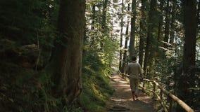 Il giovane bello in vestiti tradizionali cammina da solo nella foresta carpatica verde pittoresca video d archivio