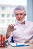 Il giovane chimico che lavora in laboratorio Fotografia Stock Libera da Diritti
