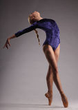 Il giovane e la ballerina incredibilmente bella è posanti e ballanti nello studio Balletto classico Fotografie Stock Libere da Diritti