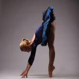 Il giovane e la ballerina incredibilmente bella in attrezzatura blu è posanti e ballanti nello studio Arte Fotografie Stock Libere da Diritti