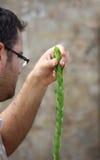 Il giovane ebreo religioso sta preparando per il sukkot Fotografia Stock Libera da Diritti