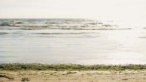 Il giovane fa la vibrazione sulla spiaggia di sabbia in macchina fotografica anteriore Onde Sea Giorno pieno di sole di estate video d archivio