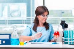 Il giovane medico femminile che lavora in laboratorio Immagine Stock Libera da Diritti