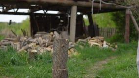 Il giovane ottiene la legna da ardere nell'iarda video d archivio