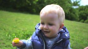Il giovane padre felice dà il dente di leone giallo al suo piccolo figlio in parco archivi video