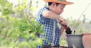 Il giovane ragazzo tailandese asiatico prepara il suolo nero a poca pianta sopra nel giardino archivi video