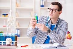 Il giovane studente che studia chimica in università Fotografie Stock