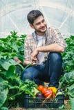 Il giovane tipo sta sedendosi fra le file delle piante Immagine Stock Libera da Diritti