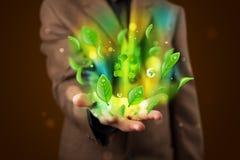 Il giovane uomo d'affari che presenta a eco la foglia verde ricicla il conce di energia Fotografie Stock Libere da Diritti