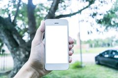 Il giovane utilizza il suo telefono cellulare per prendere le immagini delle sue memorie fotografia stock