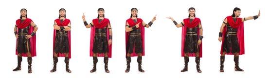 Il gladiatore isolato su bianco immagini stock