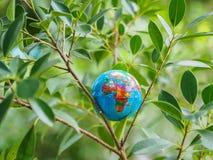 Il globo sul bokeh e sui precedenti dell'albero Conservi l'ambiente, Sa immagini stock