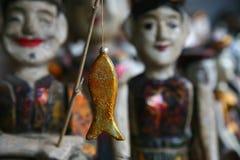 Il goldfish Immagine Stock