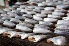 Il gorami nero è si asciuga nel mercato dell'fresco-alimento Immagine Stock