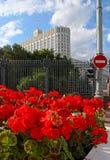 Il governo russo, i fiori severi e rossi di un passaggio del segno Immagine Stock Libera da Diritti