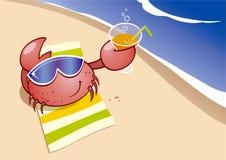 Il granchio sta riposando sulla spiaggia Fotografie Stock