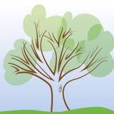 Il grande albero Fotografia Stock Libera da Diritti