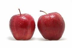 Il grande Apple fotografie stock libere da diritti
