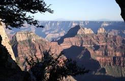 Il grande canyon Fotografie Stock Libere da Diritti