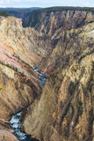 Il grande canyon di Yellowstone Immagine Stock