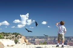 Il grande canyon trascura Fotografia Stock
