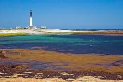 Il grande faro dell'isola Sein, Francia Fotografie Stock
