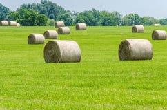 Il grande fieno rotondo mette su un'azienda agricola di midwest Immagine Stock