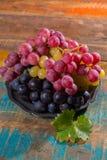 Il grande globo organico dell'uva da tavola in assortimento è servito sulla latta Fotografia Stock Libera da Diritti