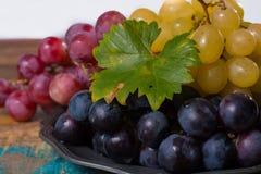 Il grande globo organico dell'uva da tavola in assortimento è servito sulla latta Fotografia Stock