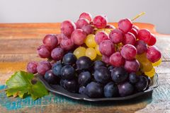 Il grande globo organico dell'uva da tavola in assortimento è servito sulla latta Fotografie Stock
