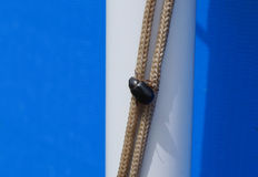 Il grande insetto nero si siede su una corda Fotografia Stock Libera da Diritti