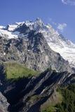 Il grande paesaggio della montagna con gli alberi Fotografia Stock Libera da Diritti