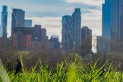 Il grande prato inglese, Central Park, New York Fotografie Stock Libere da Diritti