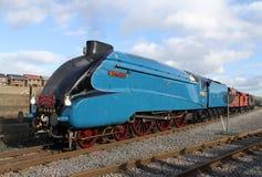 Il grande tarabuso del treno a vapore della riunione Fotografie Stock