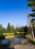 Il grande Teton Fotografia Stock Libera da Diritti